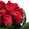 Σύνθεση με φούξια τριαντάφυλλα 2