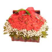 Βαλιτσάκι με κόκκινα τριαντάφυλλα