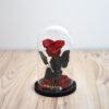 Forever Red heart