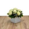 Κύβος λευκά τριαντάφυλλα
