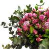 Μίνι τριαντάφυλλα
